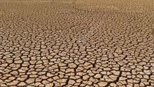 Türkiye'de topraklar tarım dışı bırakılıyor; hükümet Sudan'dan 780 bin 500 hektar arazi kiralıyor