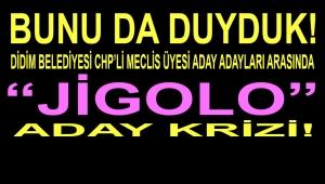 DİDİM BELEDİYESİ CHP'Lİ MECLİS ÜYESİ ADAY ADAYLARI ARASINDA