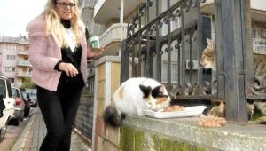 Hayvansever Kadın Muhtar Adayından Öğrencilere Burs Vaadi