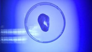 KKTC'de ilk yerli 3 boyutlu biyo-yazıcı geliştirildi