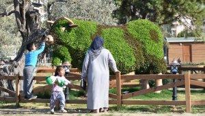 Aliağa'nın Çiftliği vatandaşların ilgi odağı oldu
