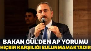 Bakan Gül'den AP yorumu: 'Türkiye'ye karşı önyargılarla dolu rapor'