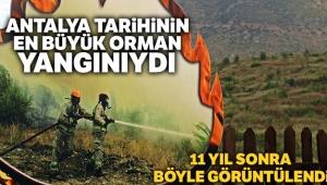 Antalya tarihinin en büyük orman yangınında küle dönen alan, 11 yıl aradan sonra havadan görüntülendi