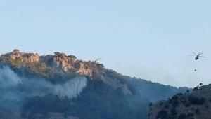 Muğla'daki orman yangınlarında son durum ne? Bakan Pakdemirli'den son dakika açıklaması