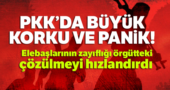 PKK'da şimdi sıra kimde korkusu had safhada