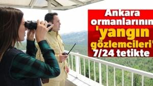 Ankara ormanlarının 'yangın gözlemcileri' 7/24 tetikte