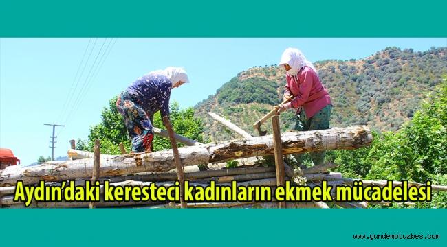 Aydın'daki keresteci kadınların ekmek mücadelesi