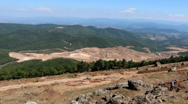 'Eskişehir'de 200 bine yakın ağaç kesilecek'