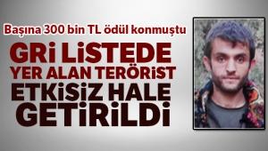 Gri listede yer alan bir terörist daha etkisiz hale getirildi