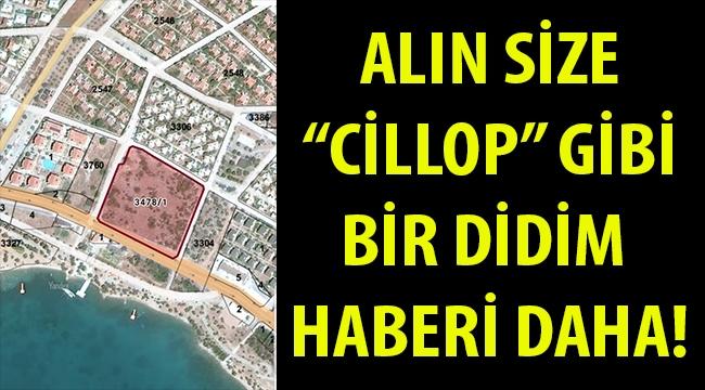 """ALIN SİZE DİDİM'DEN ALANI DA SATANI DA MEMNUN """"CİLLOP"""" GİBİ BİR TOPRAK TİCARETİ HABERİ DAHA..."""