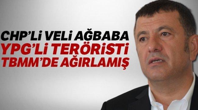 Resülayn'da etkisiz hale getirilen teröristin Ağbaba tarafından TBMM'de ağırlandığı ortaya çıktı