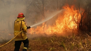 Avustralya'da yangınlar devam ediyor: 744 ev yandı