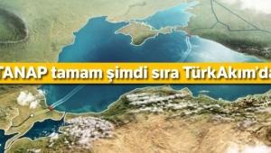 TANAP tamam şimdi sıra TürkAkım'da