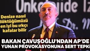 Bakan Çavuşoğlu'ndan AP'de Yunan provokasyonuna sert tepki