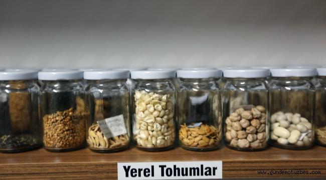 Muğla'nın yerel tohumlarına dijital ortamda ulaşım