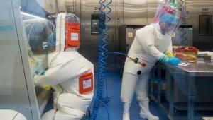 ABD'de 14 bin kişi koronavirüsten mi öldü?
