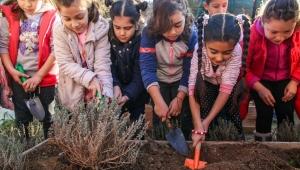 Buca'da minikler toprakla buluştu, bitkileri koklayarak tanıdı