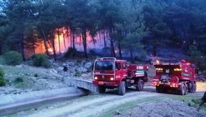 Muğla'da 33 orman yangınında 16 hektar alan zarar gördü