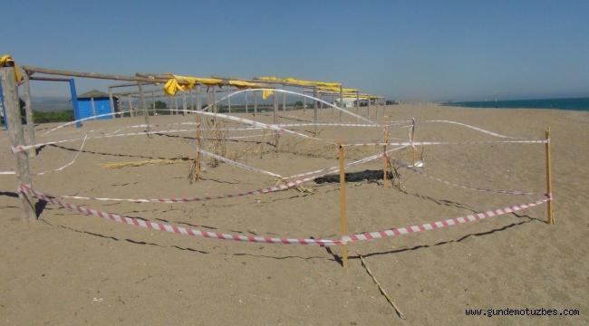 Bilinçsiz vatandaşların tahrip ettiği caretta caretta üreme alanı hendek kazılarak kapatıldı