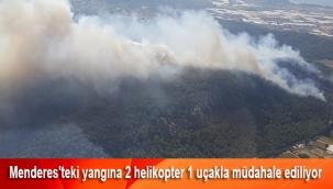Menderes'teki yangına 2 helikopter 1 uçakla müdahale ediliyor