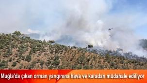 Muğla'da çıkan orman yangınına hava ve karadan müdahale ediliyor