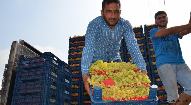 Sultani üzümde ilk ihracat tırları törenle uğurlandı