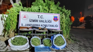 İzmir'de 15 kilo esrar, 862 kök Hint keneviri ele geçirildi