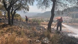 Milas'ta otluk yangını söndü, Güvercinlikte orman yangını başladı