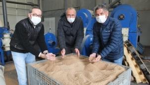 Balıkesir'de çevre dostu zeytin çekirdeği Yunanistan'a ihraç ediliyor