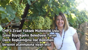 CHP'li Ziraat Yüksek Mühendisi Uslu, Soyer'in Tarım Daire Başkanlığına atadığı lise diplomalıyı eleştirdi: Tarım ihtisas işidir