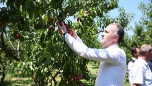 İnegöl tarım modeli Türkiye'ye örnek olacak