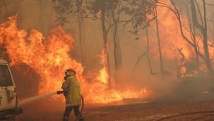 Avustralya'daki orman yangınları kontrol altına alınamıyor